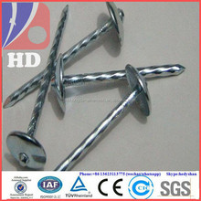 In umbrella head galvanized colored roofing nails direct factory