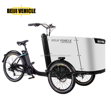 adult new design arc cargo bike electric tricycle