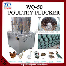 Hot selling quail processing machinery made in China