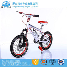 20 inch fashionable and safe Kid's bike