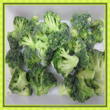 2016 iqf frozen green broccoli floret one of the biggest manufacture of frozen vegetable and fruit