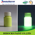 Non toxic Coloration Water Based Luminous glow in the dark Paint