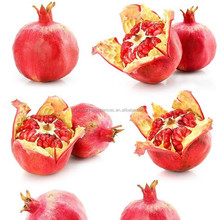 Pomegranate Juice Powder for energy drinking