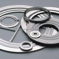 Hot Sales China Sealing Material Spiral