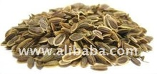 Indian Dill Seed