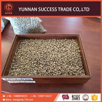 New Excellent Quality Arabica Green Coffee