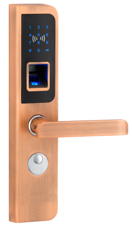 Promotional remote control smart lock for password