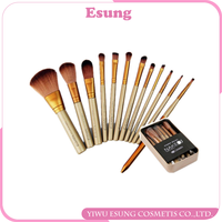 12pcs Naked 3 Makeup Brush Set