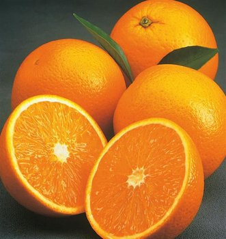 Fresh Valencia Orange from Israel - Planet Israel