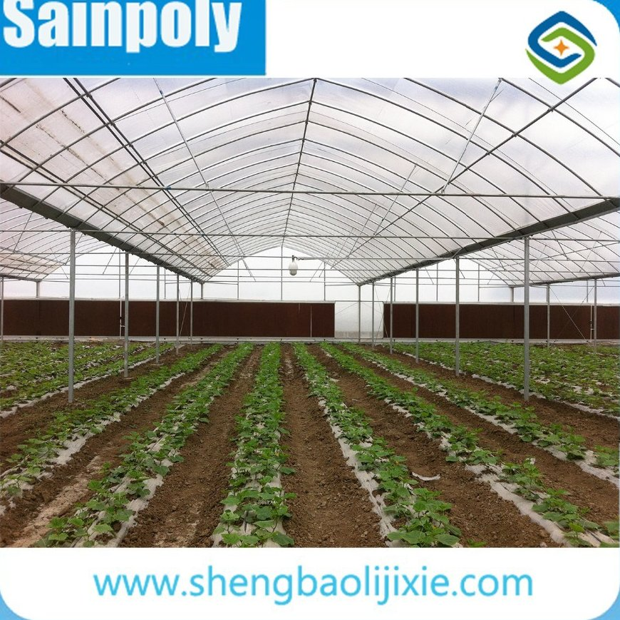 The Cheapest Hot Sale and Easily Installed Film Covered Mushroom Greenhouse