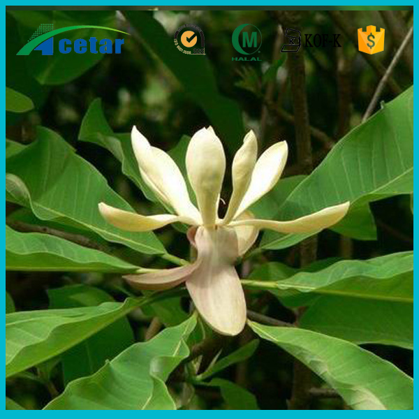 High quality organic cimicifuga racemose l.nutt pure cohosh extract powder