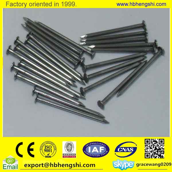 Diamond Point polished 5 inch common nails