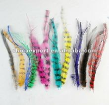 Mixed color long rooster hackle feathers