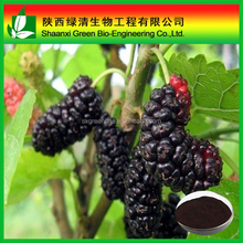 Mulberry Flavor Concentrate/Natural Mulberry P.e Mulberry Fruit Juice Concentrate Powder Mulber / High Quality Mulberry Extract