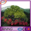 ANTI BIRD POND NET PROTECTION VEG CROPS FRUIT
