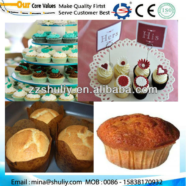 SL500 Full Automatic Cake Production Line/ Cake Machine/ Food Confectionery Machine 0086 - 15838170932