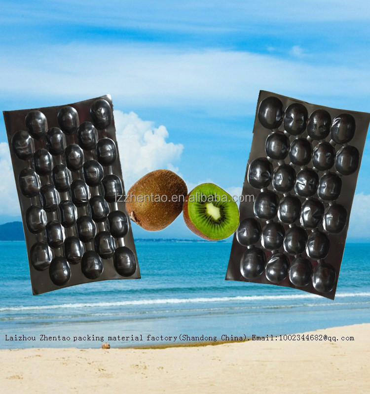 Plastic Insert Tray fruit packing Disposable Divided PP Kiwi Tray