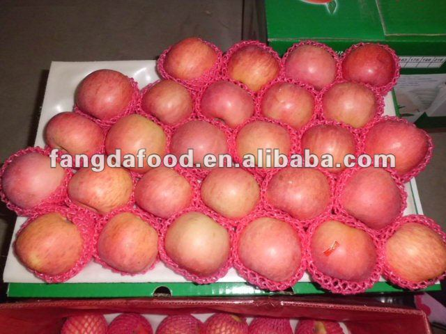 China early red apple/gala/huaguan/red star