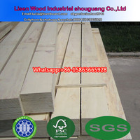 Pine / poplar wood LVL , pine core LVL plywood board timber and LVB used for pallet packing