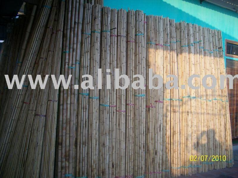 Vendere bamb polo dal vietnam con il prezzo competitivo for Cannette di bambu prezzo