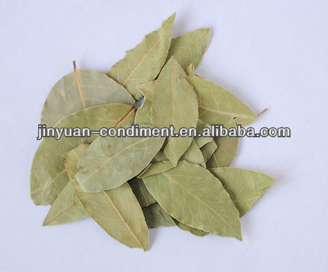Dried Competition Bay Leaf Production