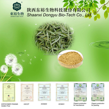 100% Natural green tea extract catechin with low price