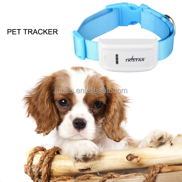 Tkstar tk909 pet gps tracker/mini gps tracking system/ cat dog collar