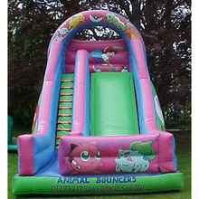 inflatables chip slide
