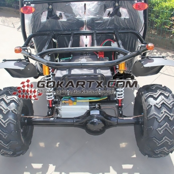 China UTV rear differential Iron cage Package go kart