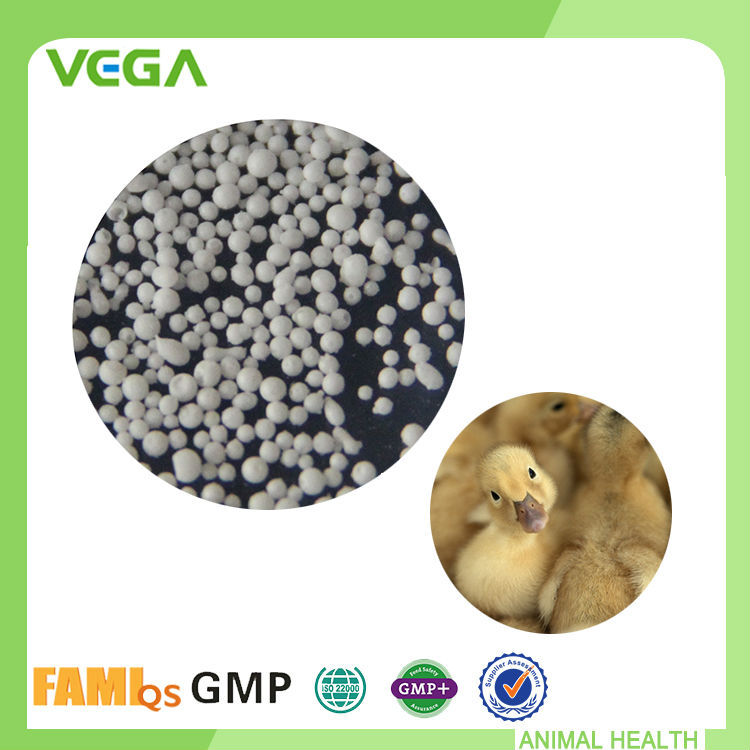 Supplement Feed Additives Top quality Animal Drug Water-Soluble Florfenicol 20%