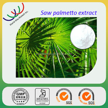 free sample for test HACCP KOSHER GMP FDA hunan changsha supplier sale of saw palmetto powder extract