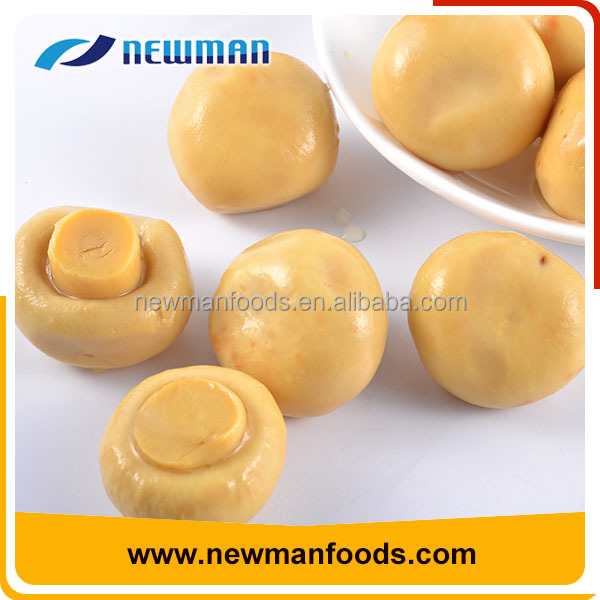 Factory price good quality brine salty canned whole button mushroom