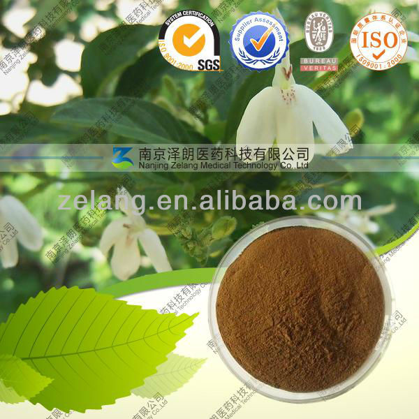 Agrimonia eupatoria High purity Agrimony extract Herba Agrimoniae