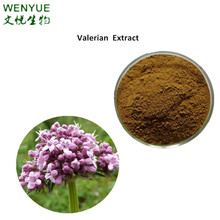 Valerian root extract powder with Free sample