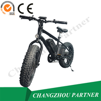 Hot selling in Europe lithium battery operated electric bicycle