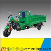 Powerful Green Cargo/Passenger Tricycle/Motor Trike