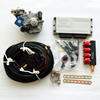 automatic cng /lpg conversion kits for sequential injection system equipment