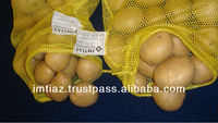 Best Potato offer from Pakistan