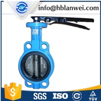 sanitary check valve manufacturer cast iron alve cast iron ball valve steel valve