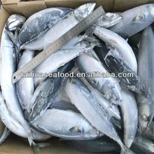 buy cheap and dory fish fillet