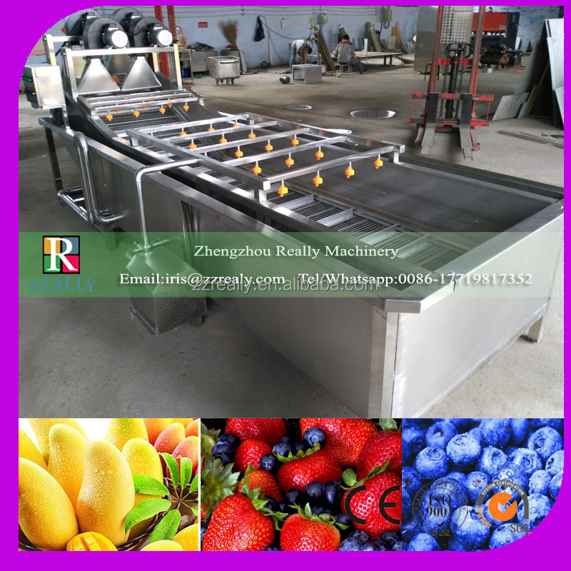 Fruit & vegetable washing, drying, waxing, sorting line machine, fruits processing