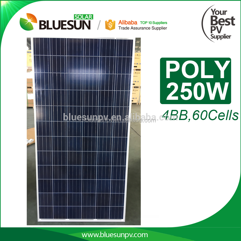 Bluesun 25 Years Warranty PV High Quality A Grade Cheaper New 250w Solar Panel