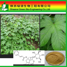 Devil S Claw Extract (plant Extract) Harpagoside 2.5%,5%/High Quality Devil Claw Extract/Plant Extract