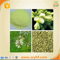 ISO Factory Suppply Sophora Japonica Extract P.E. Quercetin