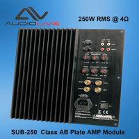 SUB-250 250w power Home theatre subwoofer Amplifier