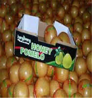 Chinese Citrus Fruit Fresh Guanxi Honey Pomelo Price