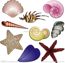 Newest marine life fashion makeup temporary tattoo sticker