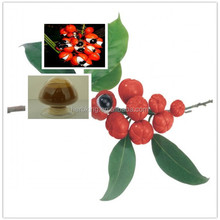 Guarana seed extract 10% 20% anti-fatigue for male