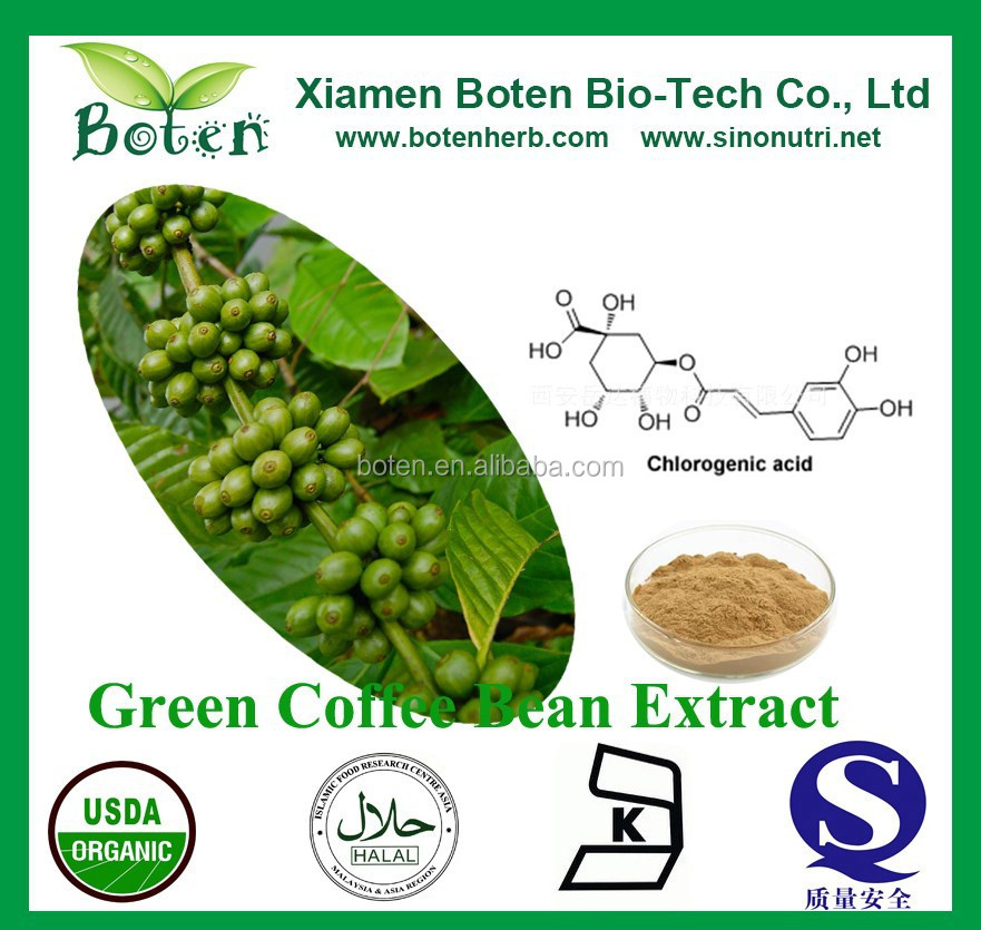 Free Sample High Quality Chlorogenic Acid Green Coffee Bean Extract Powder