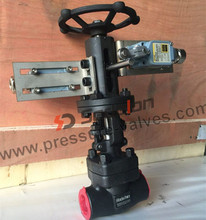 New Type API Approved WCB A105 Position Indicator Gate Valve